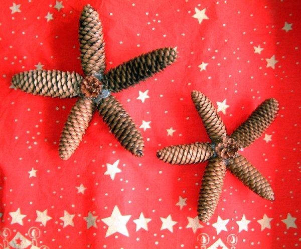 Post le lundi 01 novembre 2010 22 36 blog de - Quoi faire avec des pommes de pin ...